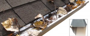 Gutter Replacement Services Adelaide