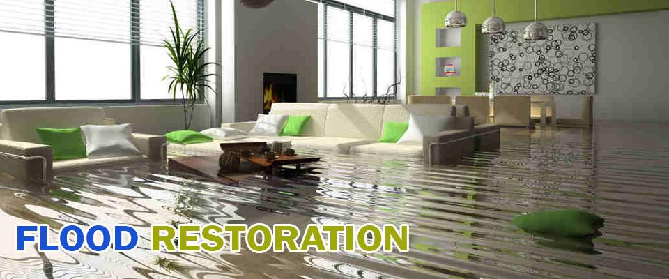 Wet Carpet Melbourne