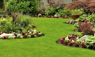 Garden-Maintenance-Melbourne-Eastern-Suburbs