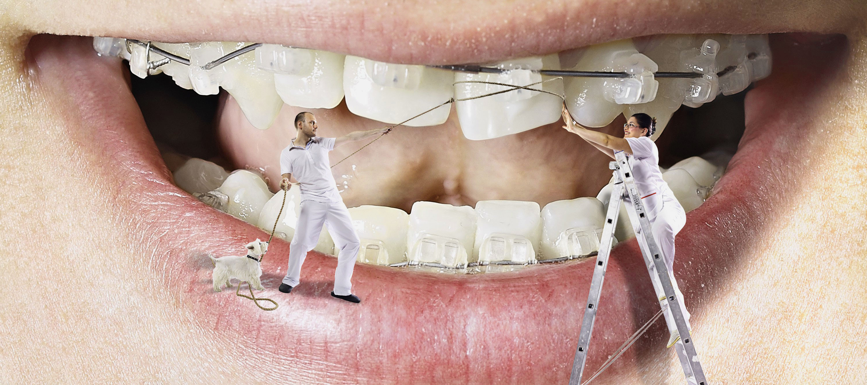 Dentist in Ahmedabad
