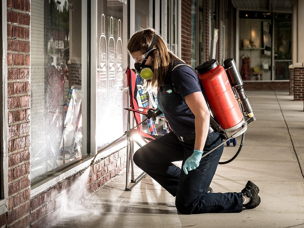 Pest Control Empire Service
