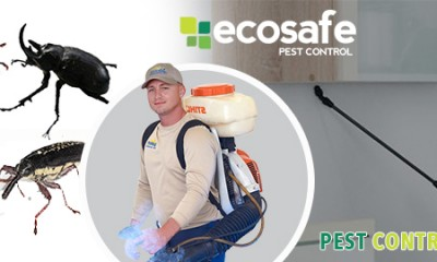Electronic Pest Control System