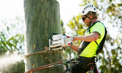 tree-removal-Adelaide_featureimg