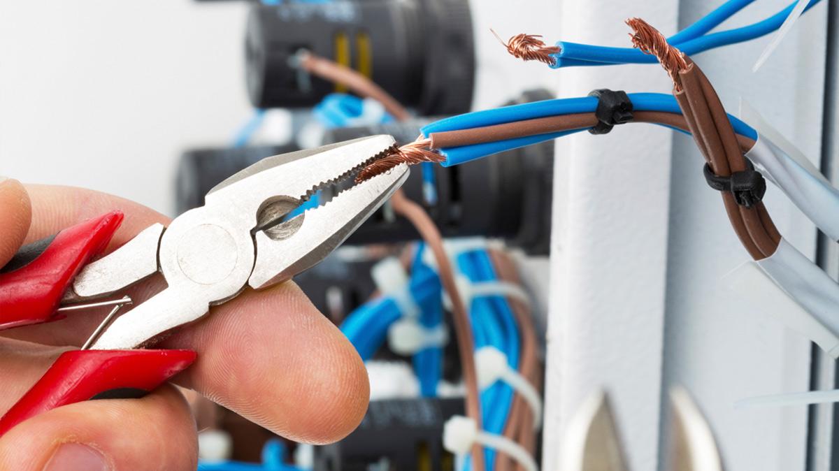 Electrician Seaton