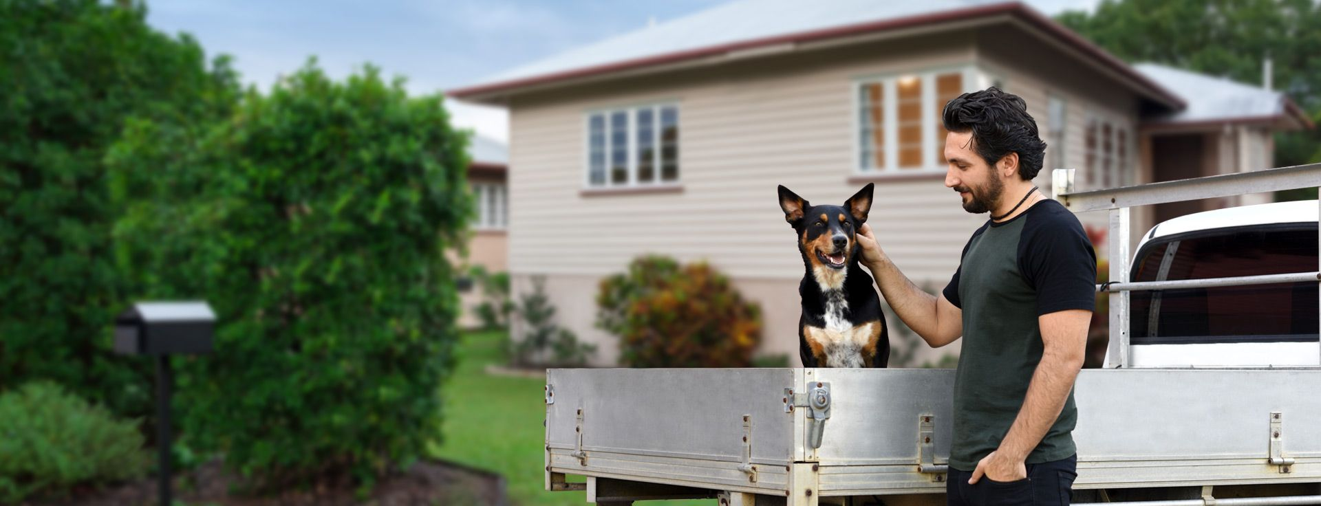 Pet Transport Australia